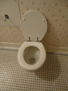 Toilet_Lid